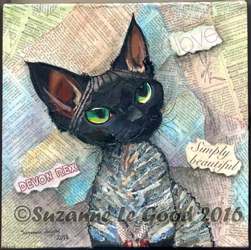 Black Smoke Devon Rex collage cprt