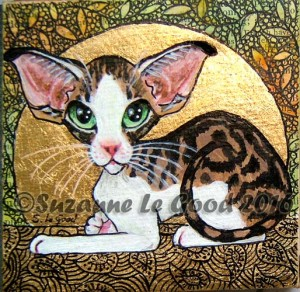 Oriental tabby and white cprt