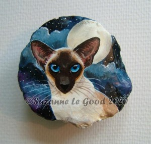 Pebble sealpoint Siamese night sky cprt