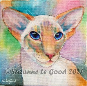 Redpoint Siamese cprt