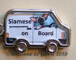 Siamese on board van close