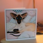 card square siamese on pastel